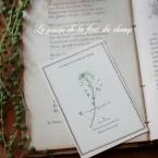 野の花の 「押し花カード」