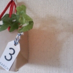 milk pack bottle bag