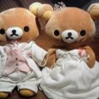 welcome bear**