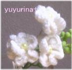 yuyurina+