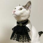 猫の首飾り ビクトリア調カラー