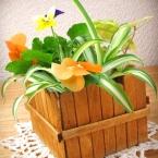 ♪簡単♪アイススティックで植木鉢カバー☆