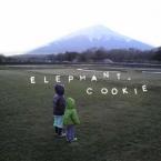 elephant_cookie