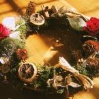 バラのクリスマスリース