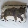 枕で寝る猫の枕