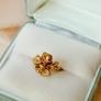 リメイク! 金の桜の指輪
