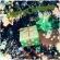 クリスマスオーナメント:プレゼント