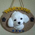 Welcomeボード(マルチーズのハル君)