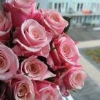 ご挨拶代わりに花束を^^♪