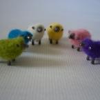 カラフル羊