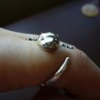 かわうその指輪