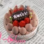 Birthdayチョコレートケーキ◎!