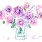 庭のバラ~✿