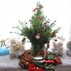 小さなクリスマスツリー☆
