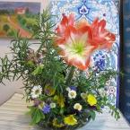 アマリリスと小花のアレンジメント~❁