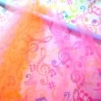 チュールのカーテン