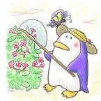 penguinmaru