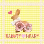 rabbit♥heart