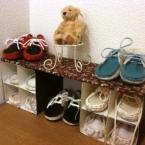 エコな子ども靴箱