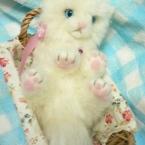羊毛フェルトでゴロンと子猫☆