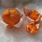みかんかぼちゃ