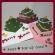簡単POP UP カード★クリスマスツリー♪