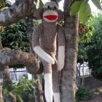sock monkey  ソックモンキー