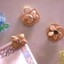 カボチャの種とコーヒー豆でナチュラルマグネット