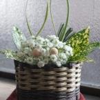 2011年もどうぞよろしく:かすみ草のうさぎさん♪