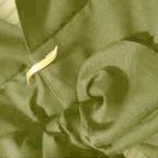 着物を逆さまに羽織る!