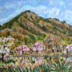 筑波山の春
