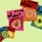フルーツマグネット